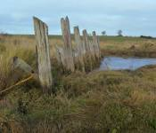 St Osyth Creek - The Old Barge Quay