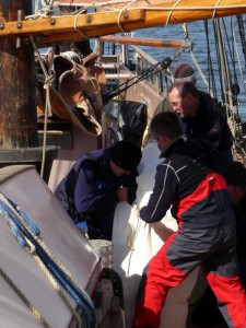 Three of the crew wrestling with the big fishermans sail.