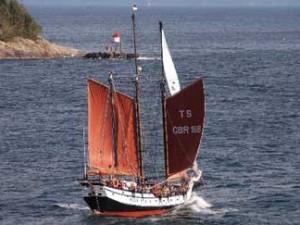 A gaff schooner sailing goose winged.